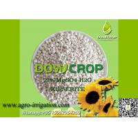 DOWCROP HIGH QUALITY 100% WATER SOLUBLE MONO SULPHATE MAGNESIUM 27% WHITE GRANULAR KIESERITE MICRO NUTRIENTS FERTILIZER Manufactures