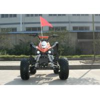Electric Kids 110CC Mini ATV Hydraulic On Pleasure Ground With Four Wheels Manufactures