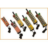 Universal Double Speed / Single Speed Wireless Industrial Remote Controller F24 Series Manufactures