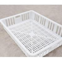 White Orange Color Plastic PE Material Broiler Chicken Carriage Cage & Transport Cage for Poultry Farming