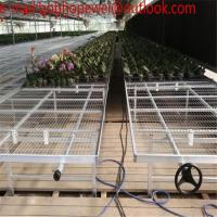 China Metal Garden Bench Nursery Flowers For Greenhouse Mesh/planting table greenhouse seedbed with Wire Mesh on sale