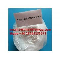 White Trenbolone Powder 99% Purity Raw Muscle Growth Anabolic Steriods Manufactures