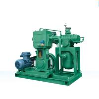 Roots oil-free vertical reciprocating vacuum unit Manufactures