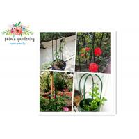 Eco Friendly Solid Durable Green Ushape Pipe Flower Support Garden Plant Supports Manufactures