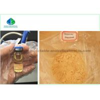 Bodybuilding Legal Injectable Steroids Trenbolone Acetate / Tren Acetate 10mg /ml Manufactures