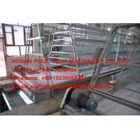 Quality Hot Galvanized Cage Chicken Farm A Type Layer Chicken Cage with 120 Birds with Automatic  Drinker & Feeding System for sale