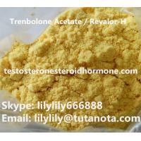 Safe Trenbolone Steroid Trenbolone Acetate Revalor-H CAS 10161-34-9 Injection Powders Manufactures