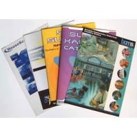 Customized Catalogue Color Booklet Printing Brochure Design and Printed Online Manufactures