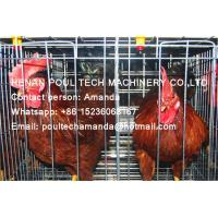 Silver Hot Galvanized Steel Cage A Frame Battery Cage Layer Breeder Chicken Cage Coop for Chicken Farming Manufactures