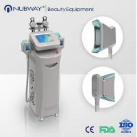 cryolipolysis rf beauty machine,cryolipolysis vacuum slimming equipment Manufactures
