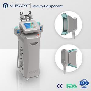 cryolipolysis rf beauty machine,cryolipolysis vacuum slimming equipment Manufactures