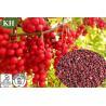 Schisandra extract, Schisandra berry extract, Schisandrol, Schisandrin, Schisantherin Manufactures