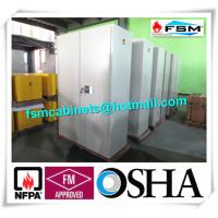 Metal Fireproof Storage Cabinets With 2 Door For Large File / Documents Manufactures