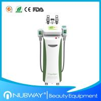 Multifunction cryolipolysis slimming fat freezing cryolipolysis slimming machine with CE Manufactures