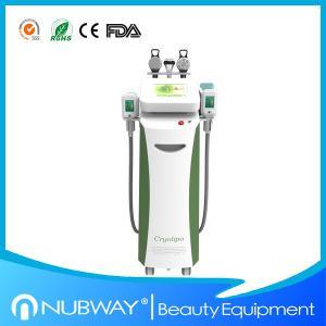 Multifunction cryolipolysis slimming fat freezing cryolipolysis slimming machine with CE Manufactures