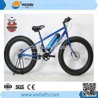 Club Use WX-TDE21Z electric bike, fat tire electric bicycle Manufactures