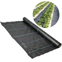 Weed Control Polypropylene Ground Cover UV Anti Recyclable Easy Install Manufactures