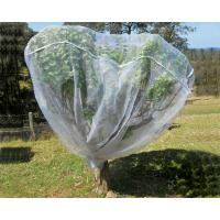 China Fruit Tree Net, 20-50mesh,0.5-6.0m,green and white,protect the trees on sale