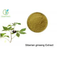 Brown Powder Natural Plant Extracts / Siberian Ginseng Root Extract Anti - Fatigue Manufactures