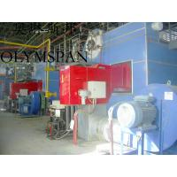 Horizontal Hot Oil Fired Electric Thermal Oil Boiler With High Heat Efficient Manufactures