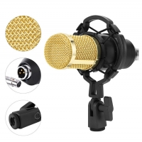 China Studio Computer Sound Recording Portable Wireless Mic on sale