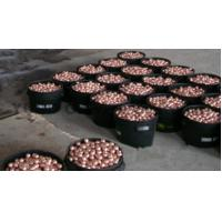 Copper ball for gravure cylinder Manufactures