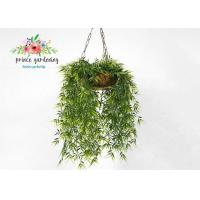 Customized Steel Wire Hanging Flower Baskets , Hanging Plant Pots Manufactures