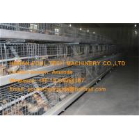 Poultry Farm Battery Baby Chicken Cage Coop for Brooding Room with Automatic Feeding & Drinking System Manufactures