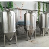 China Beer Equipment in Fermenting Equipment Popular Used for Brew Pub/Brewhouse on sale