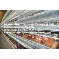 Poultry Farm Equipment Hot Galvanized Cage H Frame Battery Chicken Coop & Layer Cage & Egg Hen Cage Used in Chicken Shed Manufactures