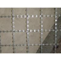 Quality Welded Razor Wire Fence Anti Climb Barrier Razor Panel Hot Dipped Galvanized for sale