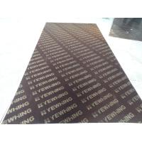17mm Finger Joint Core Film Faced Plywood Manufactures