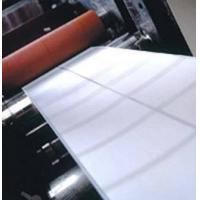China Self Adhesive PP Paper on sale