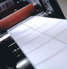 Self Adhesive PP Paper Manufactures