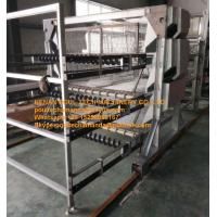 Poultry Farming Silver Hot-dip Galvanized Sheet Battery Meat Chicken Cage & Broiler Coop Equipment with 108-144 Birds Manufactures