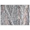 Salicin 98% White Willow Bark Extract Powder Anti Fungal Natural Ingredient Manufactures