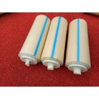 Waterproof Nylon Conveyor Rollers with Long Service Life 3 Times than Others Manufactures