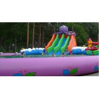 Quality 0.9mm PVC Inflatable Water Park Amusement Water Park With Slide / Tower for sale