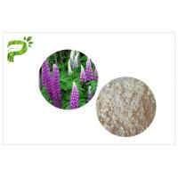 High Purity Plant Extract Powder CAS 545 47 1 Anti Inflammatory / Bacterial Lupeol Manufactures