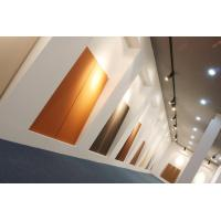 Quality 18mm thickness Wall Cladding Panels Architectural Terracotta PanelsF18 series for sale
