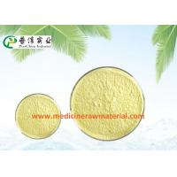 Natural Sophora Japonica Extract , Pure Plant Extracts 95% Quercetin Antioxidant Manufactures