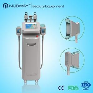 China cryolipolysis freeze sculptor / cryolipolysis fat freeze slimming machine on sale