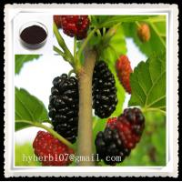 Mulberry Extract Powder Anthocyanidins Manufactures