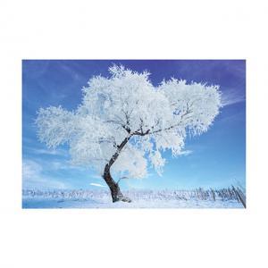 0.6mm PET 40*60cm 3D Lenticular Poster / 3D Depth Effect Lenticular Landscape Poster Manufactures