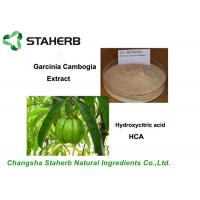 Pure Natural Antibacterial Plant Extract Garcinia Cambogia Extract 50%, 60% ,95% HCA Manufactures
