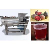 Cactus Fruit Exctruder juicer Machine |Professional cactus fruit juicer,Stainless steel juicer equipment Manufactures
