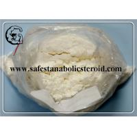 Local Anesthetic Anti-Paining Powder Benzocaine CAS 94-09-7 with Best Offer Manufactures