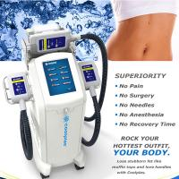 Non Surgical Cryolipolysis Fat Freezing Machine / Body Slimming Equipment 230VAC 50Hz Manufactures