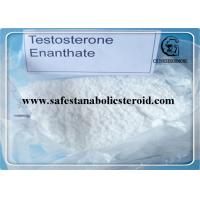 Bulking Cycle Steroids Test E 99% Primoteston Depot  CAS 315-37-7 for Muscle Growth Manufactures
