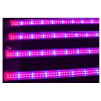Full spectrum 18w T8 led grow light for plant growth , flower and vegetable Manufactures